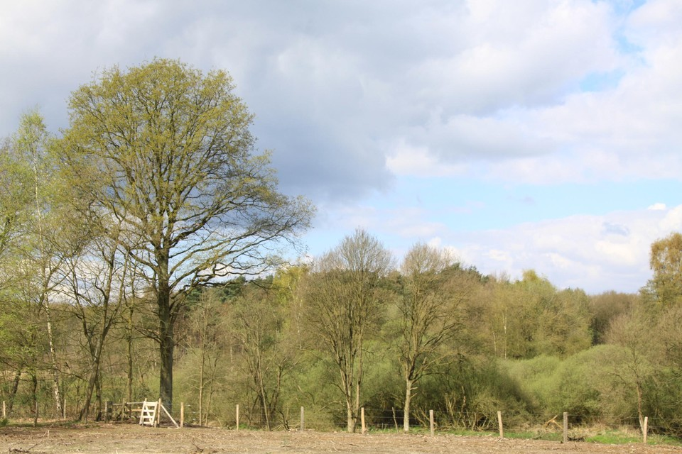 Wandelgebieden en losloopzones in Oudsbergen