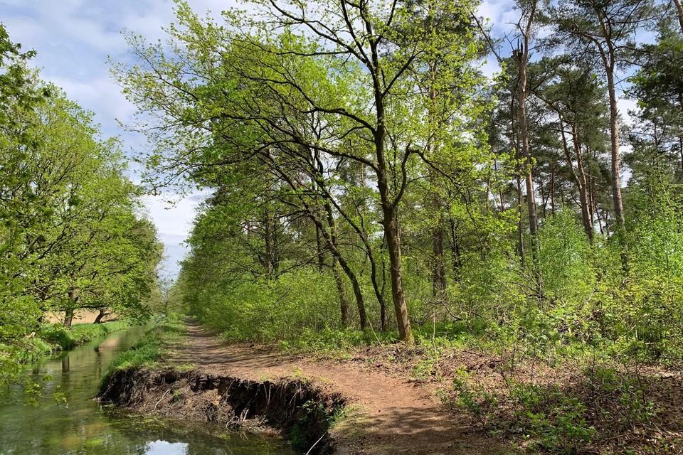 Links de Stiemerbeek, het bos rechts staat op de kaplijst.