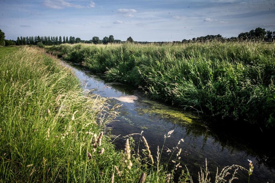De hoogste concentratie van PFOS werd niet teruggevonden aan de ondertussen bekende M3-site in Zwijndrecht, maar wel in de Melsterbeek in Herk-De-Stad.