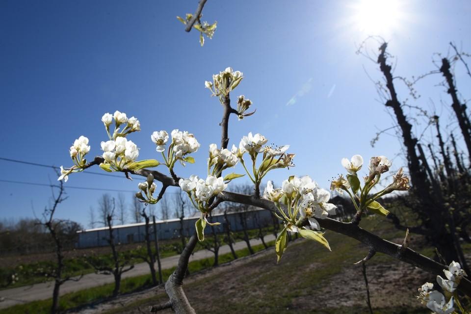 Het is al lente, maar het begin van de paasvakantie kondigt zich ook warm aan.