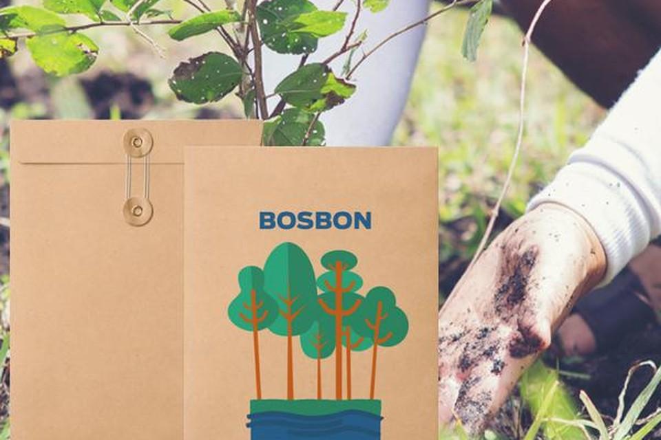 Bosbon, een initiatief van het goede doel - vanaf 40 euro om 40 bomen te planten. Te koop via: joinforwater.ngo