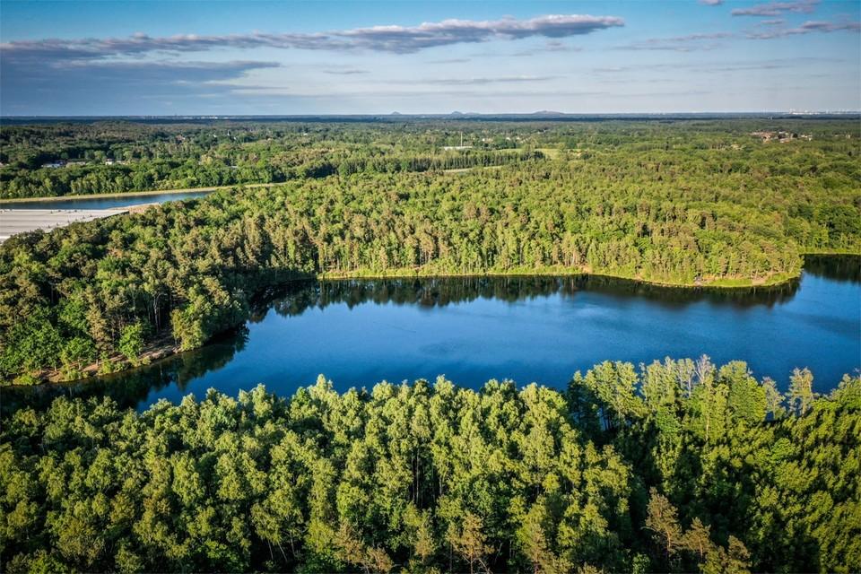 De Vlaamse regering plant een industriezone tussen 't Koet en het Albertkanaal. Daarvoor moet 23 hectare natuurgebied verdwijnen.
