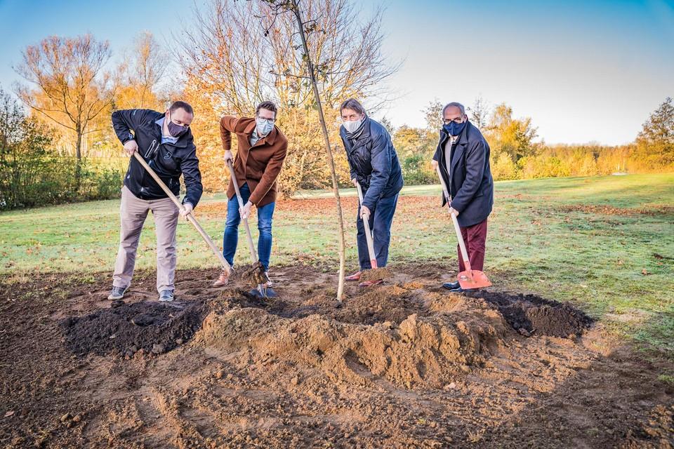 De boom werd geplant aan de Paalse Plas, onder goedkeurend oog van de eregouverneur Herman Reynders