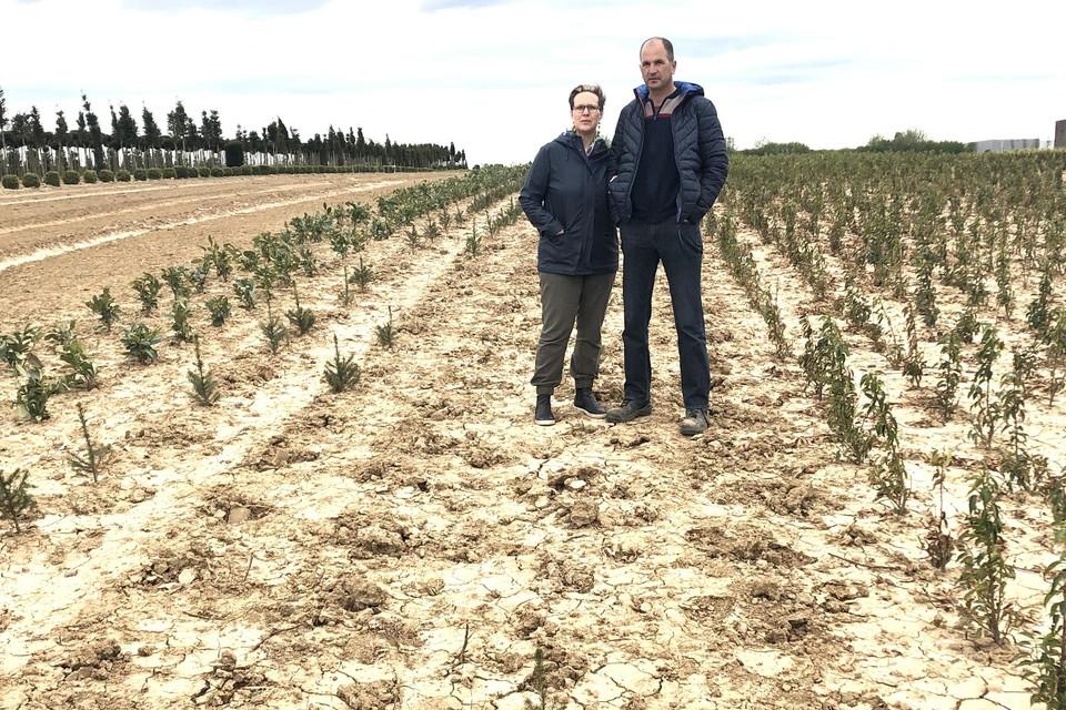 Erwin Grootaers en Carla Verbruggen op het kweekveld waar 150 jonge bomen en struiken werden gestolen.