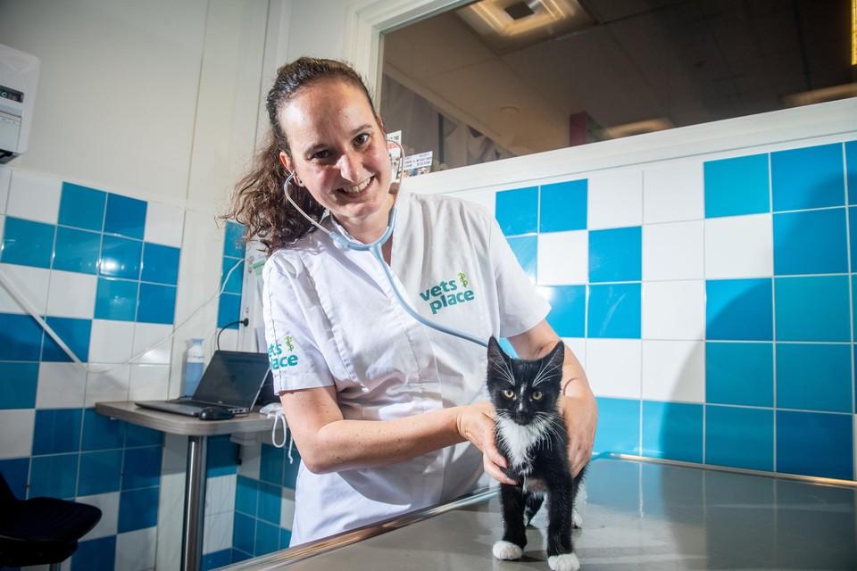 De Truiense dierenarts Marjolein Fredrix behandelde in 2020 als een van de eerste dierenartsen in België een kat met SAK, een goedkope Chinese kopie van Remdesivir.