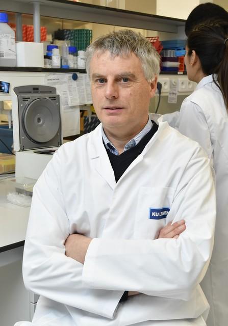 Professor Johan Neyts