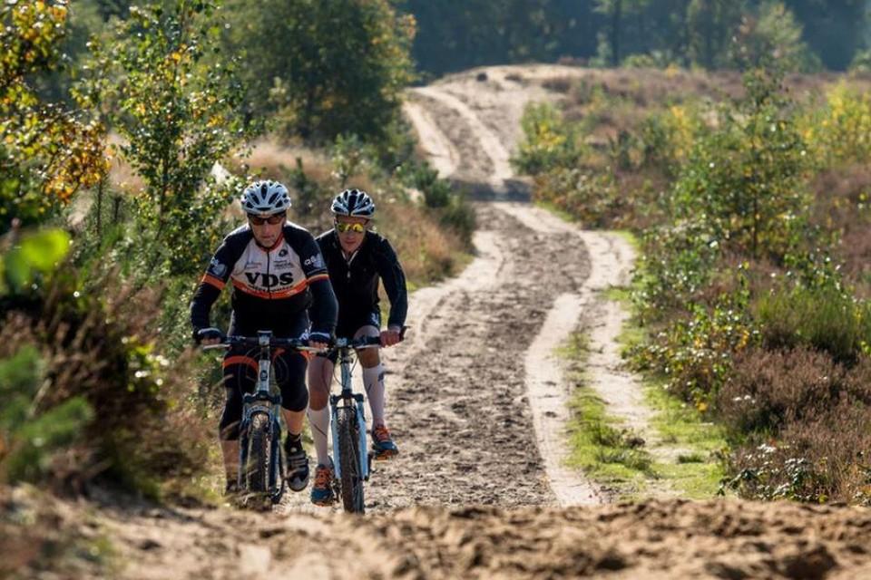 Mountainbiken in de Duinengordel in Oudsbergen, in het noordelijk deel van het Nationaal Park Hoge Kempen.