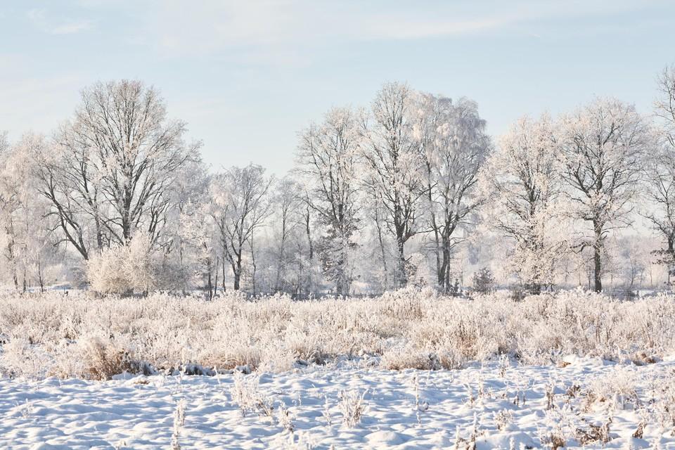 Ook in de sneeuw is het Stramprooierbroek betoverend mooi.