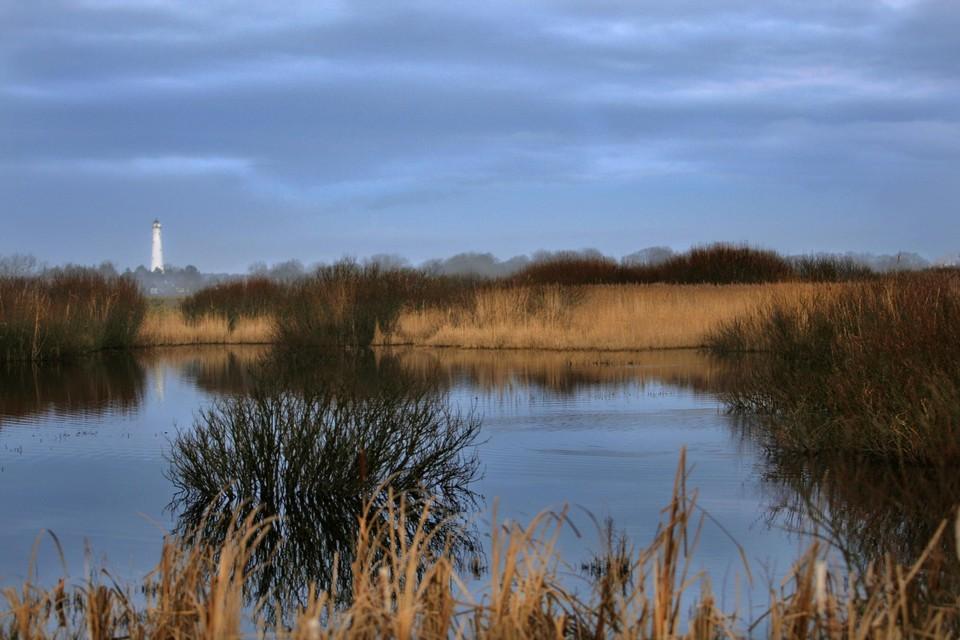 De Friese Waddeneilanden behoren tot het mooiste wat Nederland te bieden heeft.