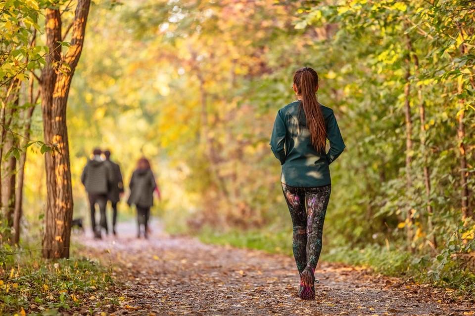 Door te wandelen word je fitter van lichaam én geest.
