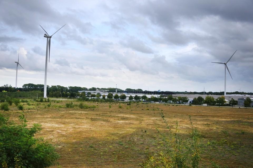 Volgens het stadsbestuur van Dilsen-Stokkem hoort de gascentrale van 55 meter hoog niet thuis op het industrieterrein van Rotem.