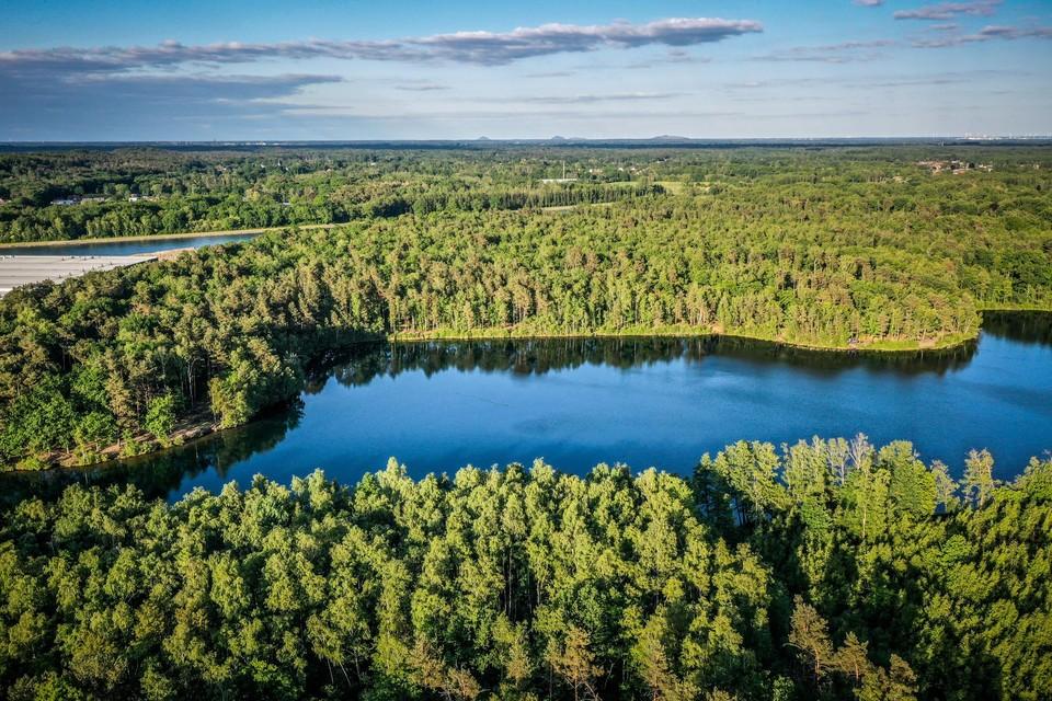 Het is een van de meest omstreden dossiers in Limburg: de kap van 23 hectare natuurgebied in de Groene Delle tussen Hasselt en Lummen.