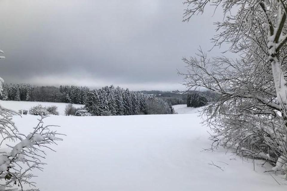 Zondagochtend is er opnieuw kans op een dun sneeuwtapijt. Wie een wandeling in de sneeuw wilt maken, moet evenwel naar de Hoge Venen.