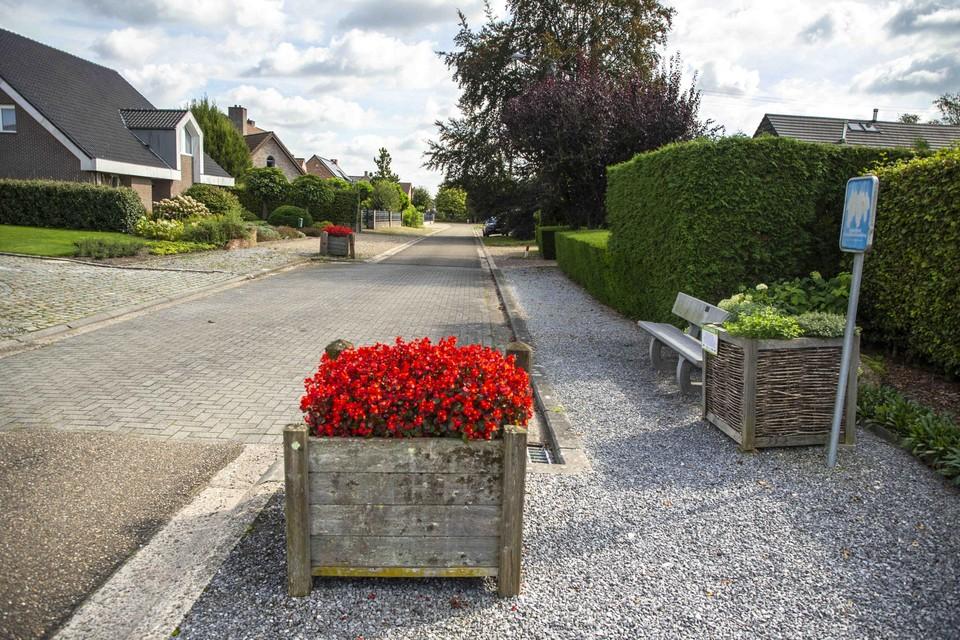 De Kattestaartstraat is de plek waar de familie Cattenstart woonde in de negentiende eeuw.