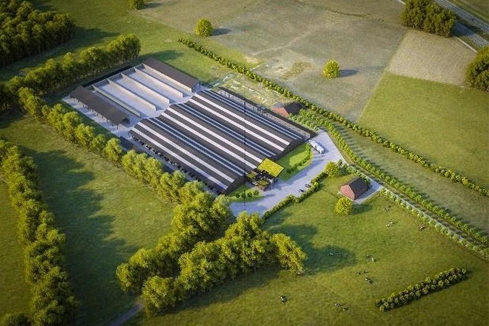 Volgens de plannen wordt het melkveebedrijf van de familie Didden een van de grootste in zijn soort van Limburg.