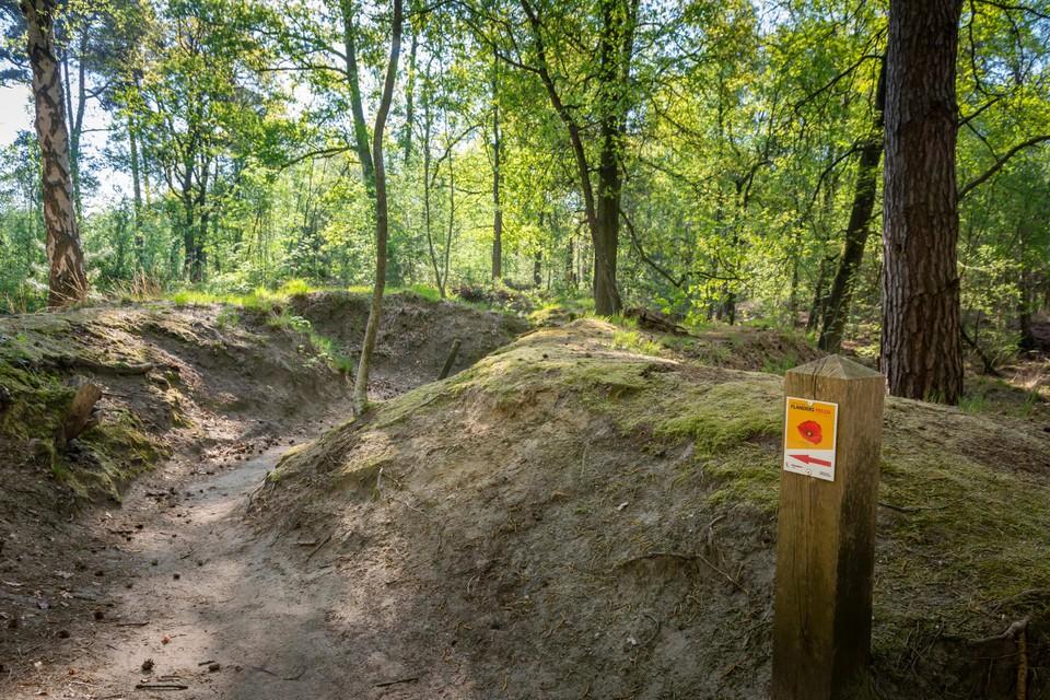 Het loopgravenpad in het Mastenbos, met nog enkele oorlogsbunkers.
