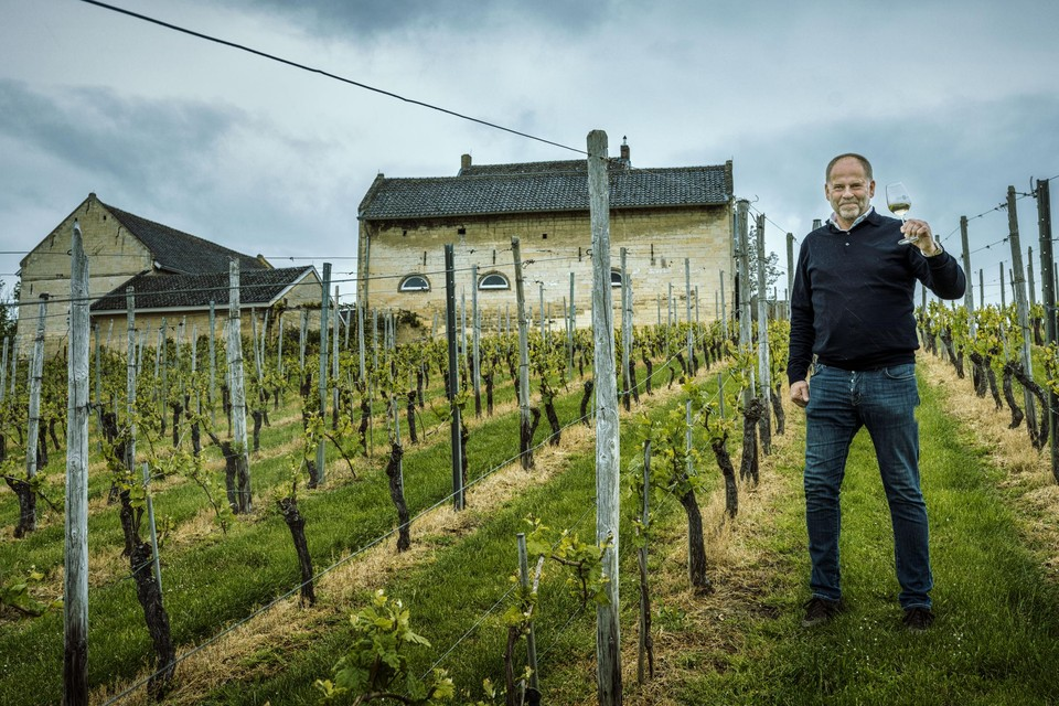 Mathieu Hulst van de Apostelhoeve maakt uitmuntende witte wijnen op de Louwberg.