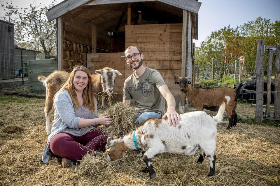 """Noémi en Roeland: """"Als we in de weide gaan zitten, komen onze geiten gezellig rond ons liggen. Zalig is dat."""""""