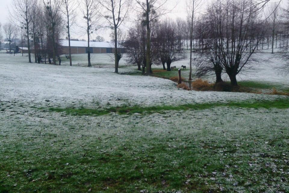 In Voeren viel een dun laagje sneeuw, in de rest van Limburg voorlopig nog niet.