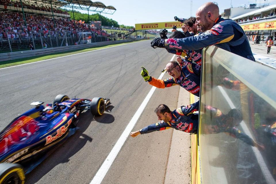 Toro Rosso-mecaniciens vieren de vierde plaats van Verstappen (GP van Hongarije)