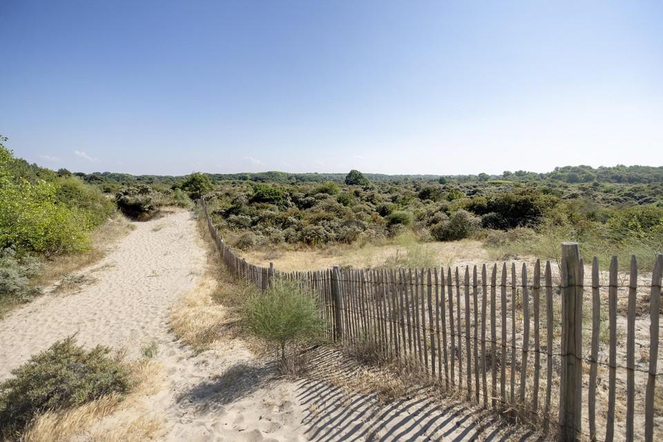 De Houtsaegerduinen en het Kerkepannebos vormen een ingesloten natuurgebied tussen De Panne en Sint-Idesbald.