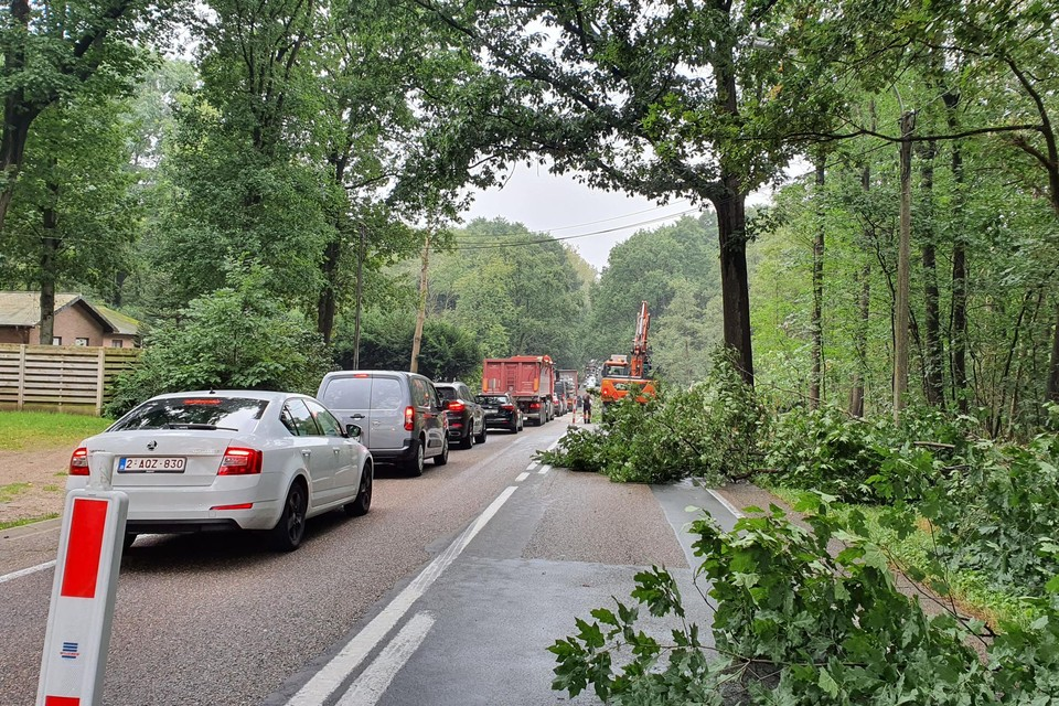Het verkeer op de N 73, Peer-Bree in Ellikom moest vandaag al aanschuiven. Er stonden kilometerslange files in beide richtingen.